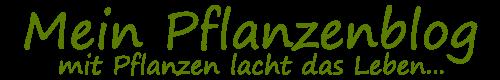 Mein-Pflanzenblog