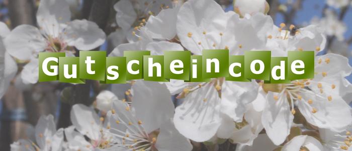 Gutschein-6.jpg