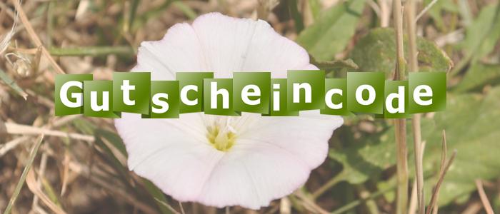 Gutschein-7.jpg
