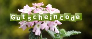 Gutschein-Logo