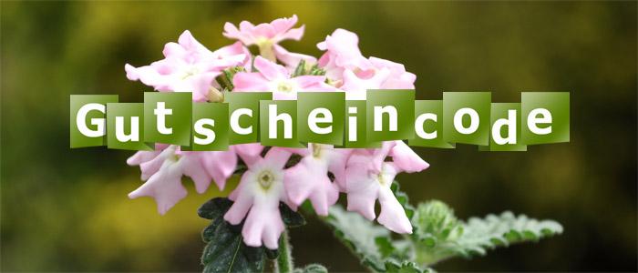 Gutschein-Logo-2.jpg