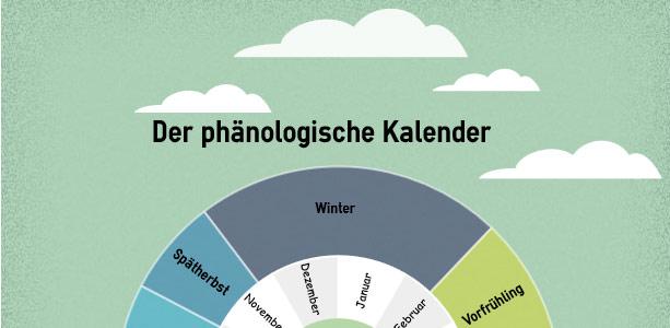 Jahreszeiten-unsere-Pflanze-1.jpg