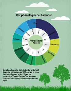 Jahreszeiten unsere Pflanzen